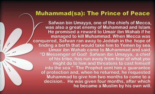 Forgiving Safwan b. Umayya