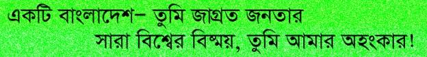 Bangladesh full of Surprises (2)