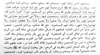 Seerat Halabiyya volume III, page 96 - Copy (2)