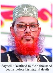 Delwar-Hossain-Sayeedi- - Copy
