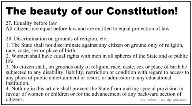 Constitutional Guarantees - Copy (2)