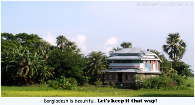 Typical Southern Bangladesh house (2)