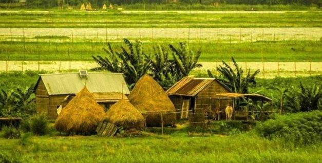 Amazing Bangladesh - Copy 01