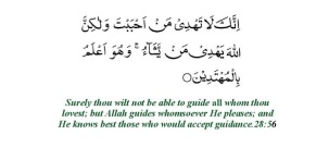 Qasas(28) Verse 56