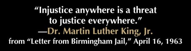 Injustice any (2)