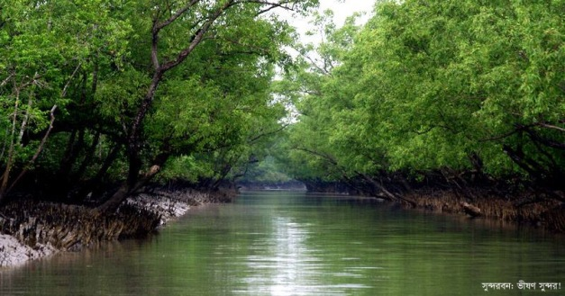 Sundarbans edited