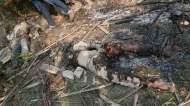 Hizbut Tauhid men brutally killed