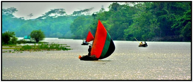 Beautiful Bengal 01 - Copy-001