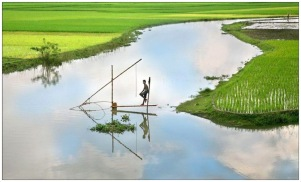 Most beautiful Bangladesh (2)