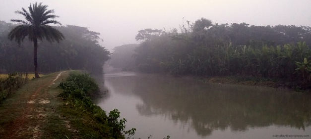 a-beautiful-canal-in-barguna-district-2
