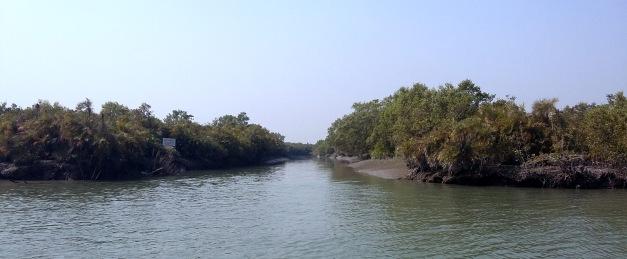 kalagachia-forest-point-sathkhira